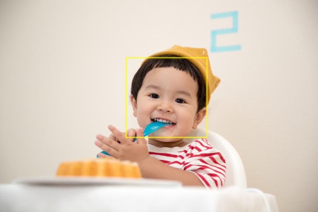 【学校・教育】画像認識AIで大量にある写真の中から自分の子どもの写真だけを購入|AI・人工知能製品・サービス・ソリューション・プロダクト・ツールの比較一覧・導入活用事例・資料請求が無料でできるメディア