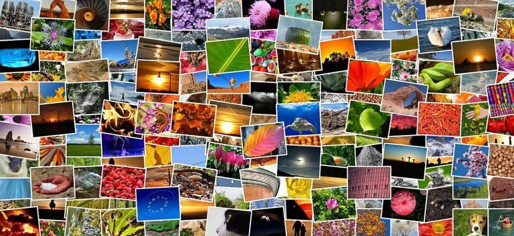 画像、データを複数のグループに分類|人工知能を搭載した製品・サービスの比較一覧・導入活用事例・資料請求が無料でできるAIポータルメディア